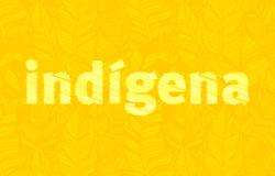 MPF  determina suspensão de turismo dentro da Terra Indígena