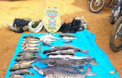 Polícia Civil prende 7 e apreende cerca de 200 kg de pescado irregular