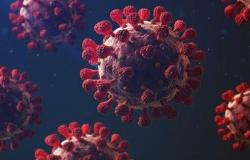 Em 24h, 86 pessoas morrem por Covid-19 em MT; maior recorde desde o início da pandemia