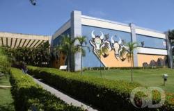 Corregedora do CNJ revoga compra de jatinho de R$ 8,5 milhões