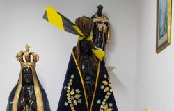 Servidor é detido suspeito de vandalizar e >enforcar> imagem de Nossa Senhora Aparecida na ALMT