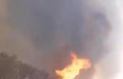 Homem é preso em flagrante por provocar incêndio as margens de rodovia