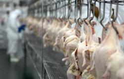 SECEX: 314,3 mil/t de carne de frango embarcadas em maio