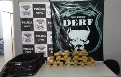 Foi apreendido 36 tabletes de maconha em casa abandonada em Rondonópolis pela Polícia Civil