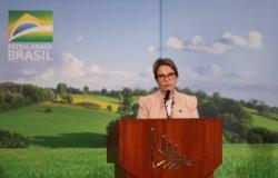 Ministra vê safra recorde e mais investimentos na pecuária em 2020