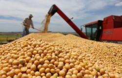 Agronegócio representa quase 70% dos valores investidos pelo FCO na região Centro-Oeste