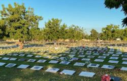 Brasil registra 1.582 mortes por Covid-19 nas últimas 24 horas