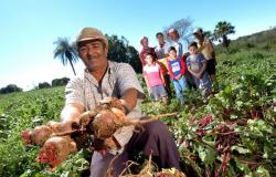 MT monta força operacional para levantar dados da agricultura familiar