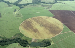 AGRICULTURA SUSTENTÁVEL: Lavouras são apenas 7,6% do Brasil, segundo a NASA