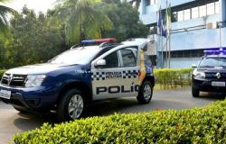 Polícias Civil e Militar apreendem 205 tabletes de maconha em Jaciara