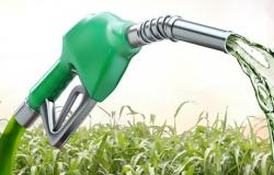Bioenergia será essencial para enfrentar mudanças climáticas