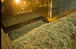 Copersucar processa 85 milhões de toneladas de cana na safra 2017/18, queda de 2,3%