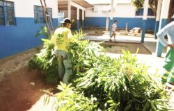 Setenta reeducandos da Penitenciária Central e CRC serão contratados pela Prefeitura de Cuiabá