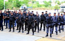 Apreensão de drogas em Mato Grosso ultrapassa 11 mil toneladas