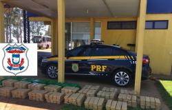 Polícia Civil de Primavera do Leste e PRF apreendem 501 quilos de maconha em Mato Grosso do Sul