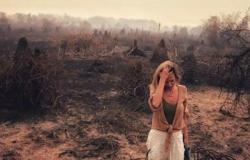 Ativista animal, Luísa Mel acompanha situação do Pantanal mato-grossense
