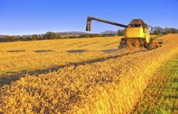 Balança do agronegócio tem superávit recorde de US$ 61,5 bi até agosto, diz CNA