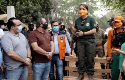 A pedido do governador, Forças de Segurança Nacional virão combater incêndios em MT