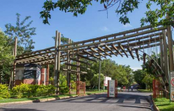 Atividades no Parque Mãe Bonifácia são suspensas após morte de 7 macacos saguis