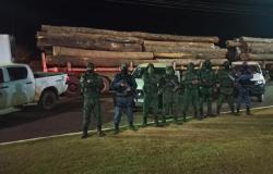 Operação do Batalhão Ambiental prende cinco pessoas e aplica R$ 481 mil em multa