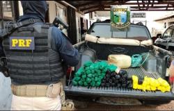 Ação integrada apreende 66 tabletes de pasta base e prende dois por tráfico em Curvelândia e Mirassol