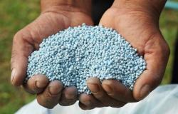 Alto preço de fertilizante desafia produtor