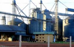 Começa primeira etapa do censo de armazenagem no Mato Grosso
