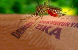 Zika e Chikungunya são de alto risco para Cuiabá e região.