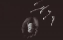 IAB é favorável à descriminalização do aborto até a 12ª semana de gestação