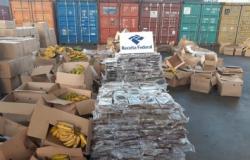 PF cumpre mandado em Cuiabá contra quadrilha que exporta drogas para Europa