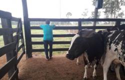 Produtores de leite mantêm greve pelo 5º dia