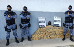 Rotam prende homem com 350 kg de maconha; prejuízo de R$ 500 mil aos criminosos