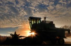 Colheita de soja atinge 61% da área no Rio Grande do Sul; milho vai a 80%