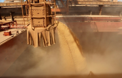 Brasil pode embarcar até 11,96 milhões de t de soja em maio, aponta ANEC