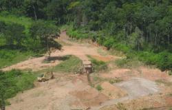 Operação desarticula atuação de grupo que utilizava licença falsa para exploração ambiental em Nova Lacerda