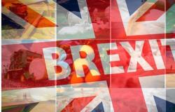 Brexit tornará a agricultura britânica a inveja do mundo