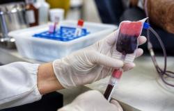 MT Hemocentro busca doadores para reforçar estoque de sangue no período de Carnaval