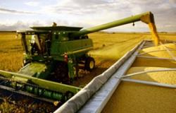 Colheita de soja do Paraná dispara a 42% da área; plantio de milho atinge 61%