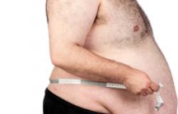 Bactérias podem ser chave para perda de peso, diz estudo chinês