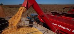 Lideranças do agro e produtores rurais levantam custos de produção em SC