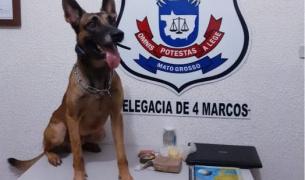 Polícia Civil prende traficante que atuava em São José dos Quatro Marcos e região