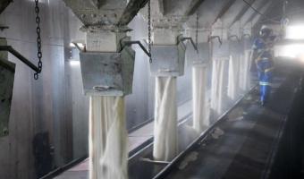 Exportação de açúcar atinge 1,492 mi t em julho – Secex