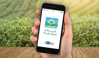 Empaer lança novo aplicativo em maio para facilitar contato de agricultores e técnicos
