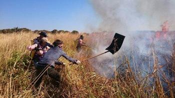 Estado e municípios identificam 57 ocorrências de incêndios florestais