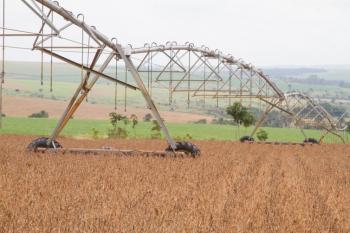 Produção de grãos da safra 2019/2020 será recorde, indica estimativa da Conab -Tony Oliveira/CNA/Direitos Reservados