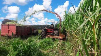 hoje ficou mais fácil e rápido o agricultor acessar e contratar o crédito rural por meio do atendimento de um técnico da Empaer, que está operando em sistema online via Coban - Foto por: Arquivo