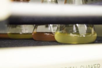 Plataforma utilizada para produzir anticorpos monoclonais contra tétano e zika será empregada para desenvolvimento de um fármaco capaz de tratar a doença causada pelo novo coronavírus (foto: cultivo de clones/Instituto Butantan)