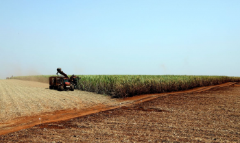 Para a ministra Tereza Cristina, o governo precisará levar os conceitos do plano aos pequenos produtores.         Foto:Paulo Whitaker/Reuters