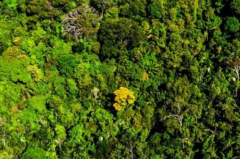 Região Amazônica - Foto por: Marcos Vergueiro/Secom