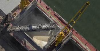 Açúcar/Secex: Brasil exportou em 2019 14% menos açúcar (bruto e refinado)